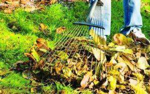 убираем растительные остатки